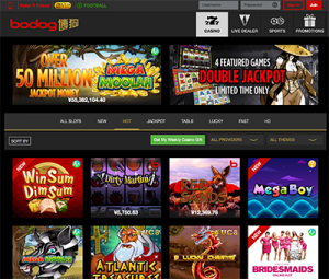 Bodog88 instant play desktop casino site
