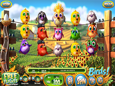 Birds slot game
