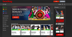 Bodog high-stakes casino website